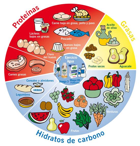 Rueda Alimentos Dieta Zona