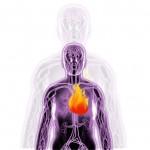 enerzona-luchar-contra-la-inflamacion
